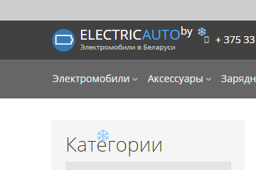 electricauto.by